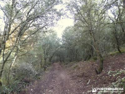 Hoces Río Riaza - Villa Ayllón; rutas de senderismo en la sierra de madrid